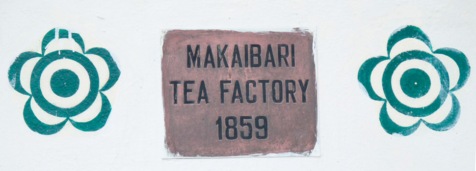 Makaibari Company Profile and agenda